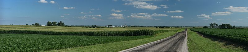 800px-Corn_fields_near_Royal,_Illinois