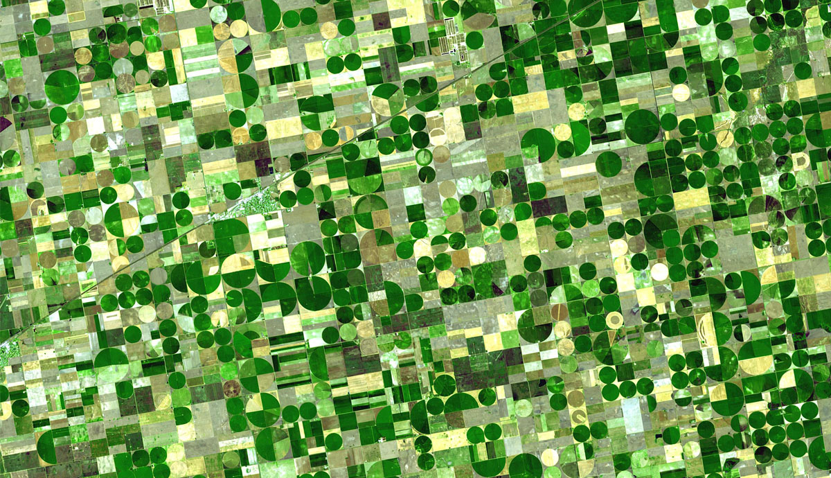 Satellite Image of Kansas Fields