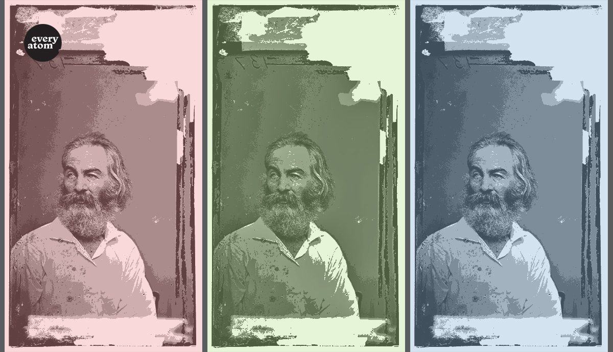 Whitman in triplicate