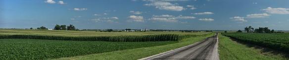 800px-Corn_fields_near_Royal,_Illinois