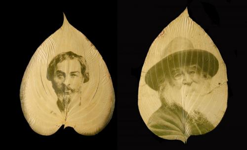Whitman at two different ages on a leaf each