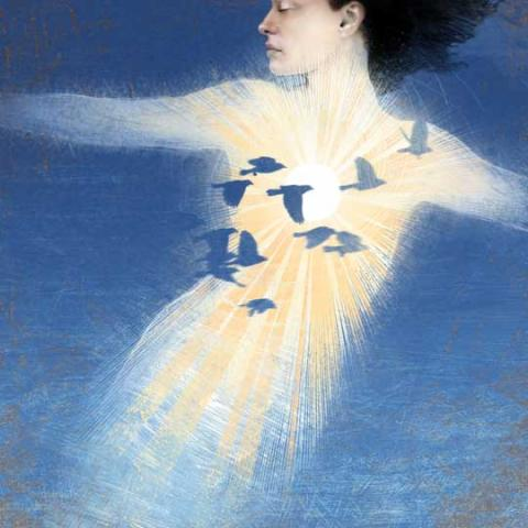 Illustration of a Girl Made of Sunlight and Birds