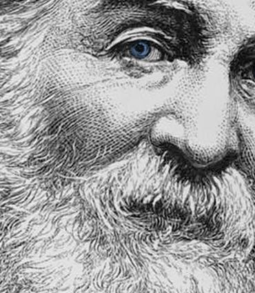 intimate drawn Whitman