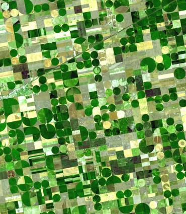 Satellite Image of Kansas Fields