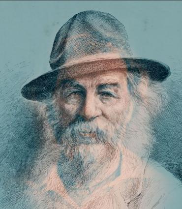 Drawn Whitman
