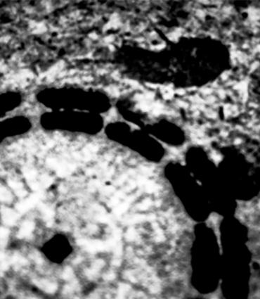 Footprints around a sewer grate