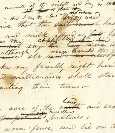 Manuscript in Whitman's hand