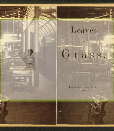 Stereo image of old print shop, with frontispiece to 1855 Leaves of Grass