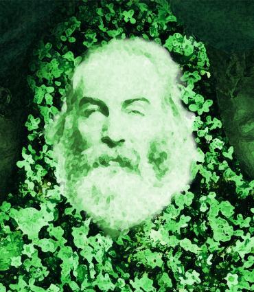 Whitman between boots